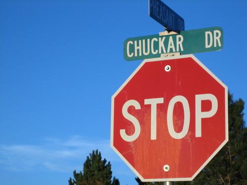 "STOP! It's ""Chuckar Drive"""